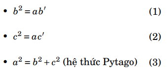 Các hệ thức lượng trong tam giác vuông
