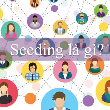 Seeding là gì? Nghệ thuật Seeding hiệu quả